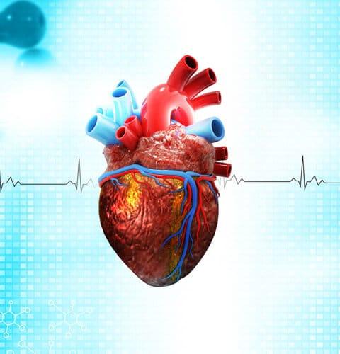εφαρμόζουμε συστήματα έγκυρης διάγνωσης και αντιμετώπισης του οξέως εμφράγματος και των αγγειακών εγκεφαλικών επεισοδίων